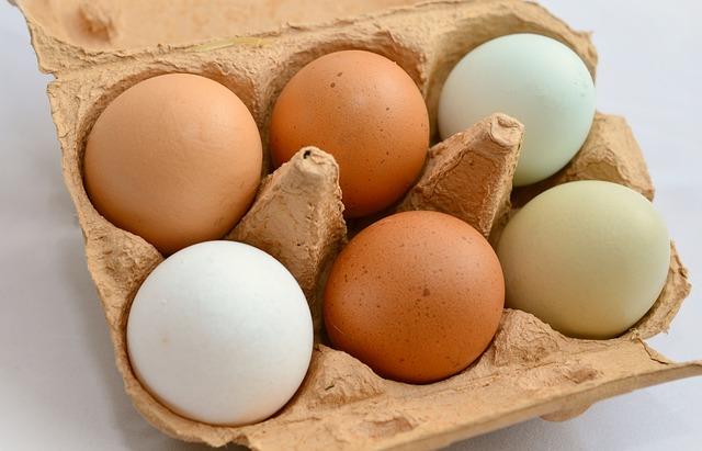 egg 653303 640