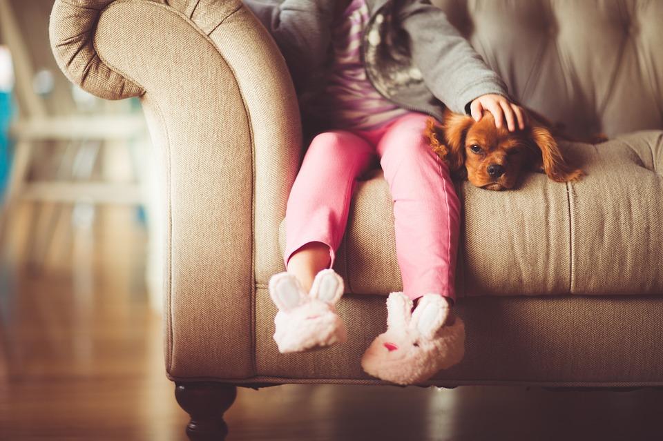 puppygirl 1561943 960 720